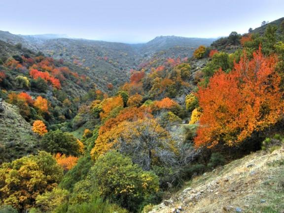 Valle serrano en otoño